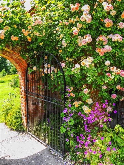 How To Create A Walled Garden